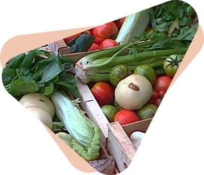 Image for Supermarchés collaboratifs : donner de son temps pour mieux consommer tout en soutenant directement les producteurs locaux